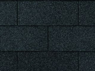 XT25 Strip Shingle in Black