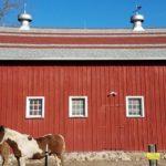 Landmark Pro Shingles Installed on Barn By Paragon Exteriors LLC.